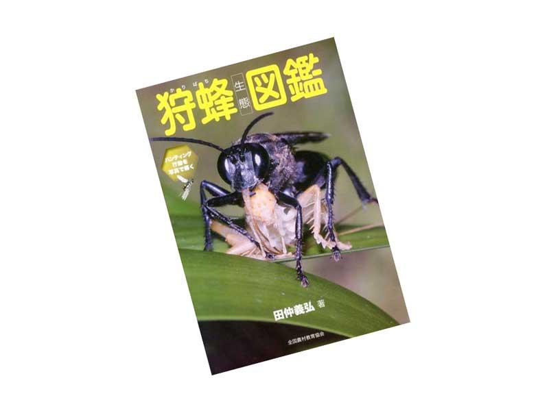 狩蜂生態図鑑