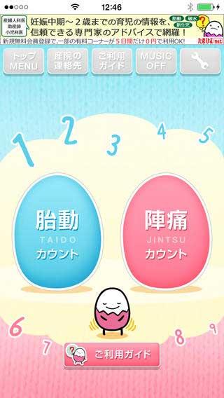 たまひよの胎動陣痛カウンター(サイト画面キャプチャ)