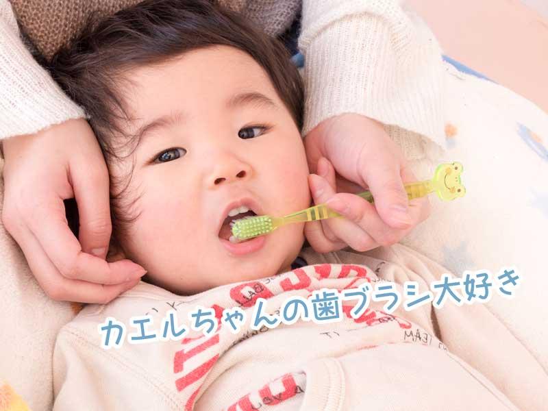 子供の仕上げ歯磨きをするお母さんの手