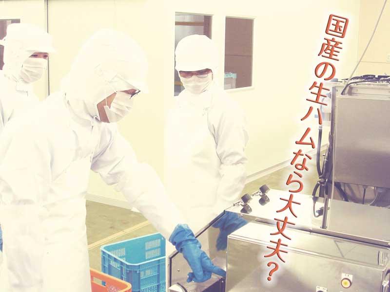 日本の食品工場
