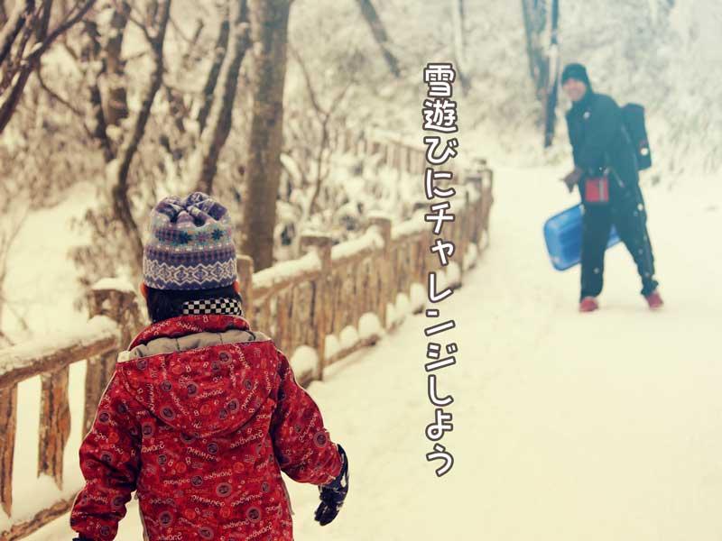雪合戦をする親子