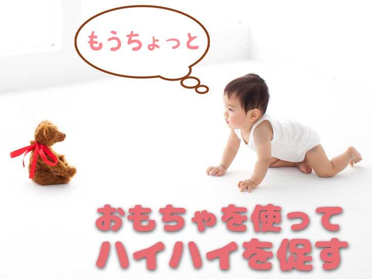おもちゃを追いかけてハイハイする赤ちゃん