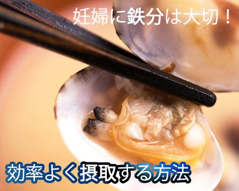 妊婦の鉄分補給に良い食べ物~鉄吸収は組み合わせがカギ!