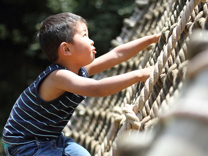 ロープのはしごを登る幼児(3歳児)