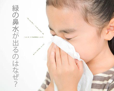 緑の鼻水は副鼻腔炎?症状の変化で子供の異常を早期発見