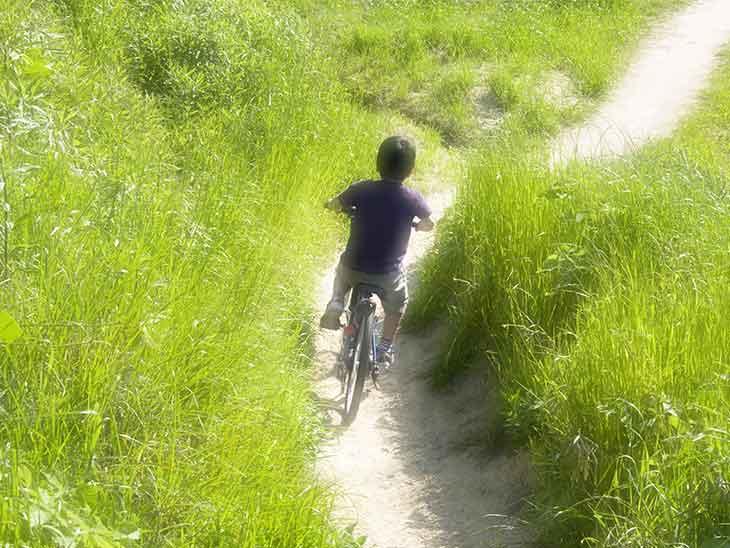 小道を自転車で走ってる男の子