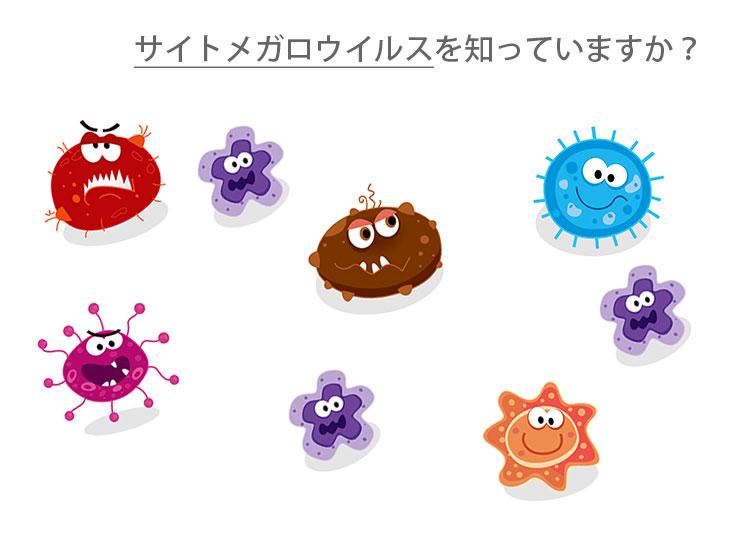 サイトメガロウイルスを知っていますか?