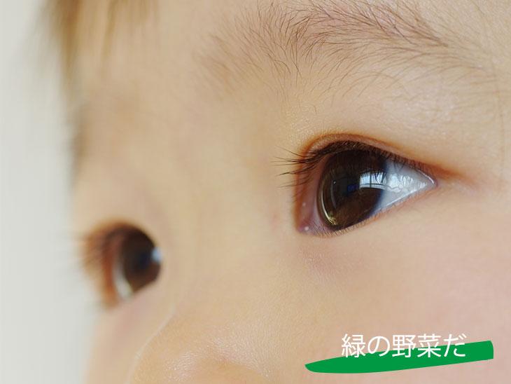 2歳児の目