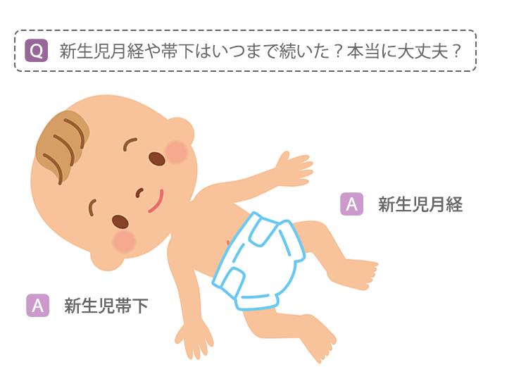 「新生児月経Q&A」イラスト