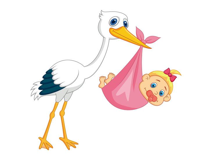 女の子の赤ん坊を運ぶコウノトリのイラスト