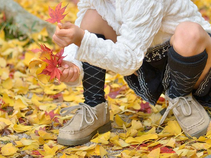紅葉を拾っている女の子