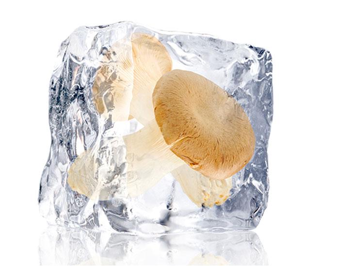 凍ったエリンギ