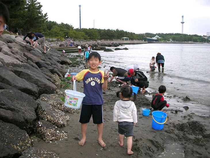 潮干狩りをする子供の写真