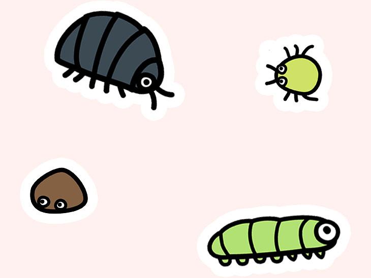 虫のイラスト