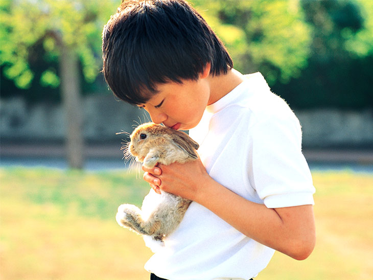 ウサギを抱っこしてる男の子
