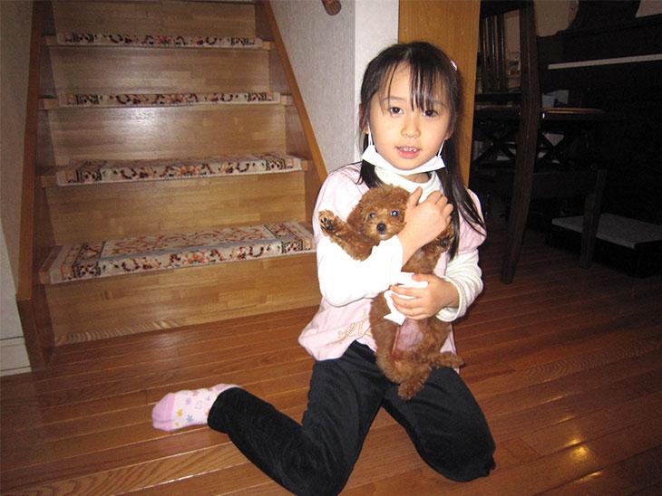 子犬を抱っこしてる女の子