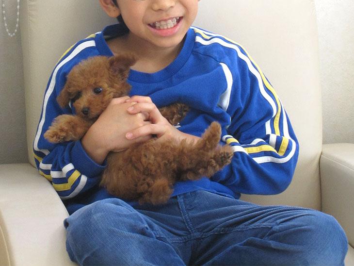 男の子に抱っこされて暴れてる子犬