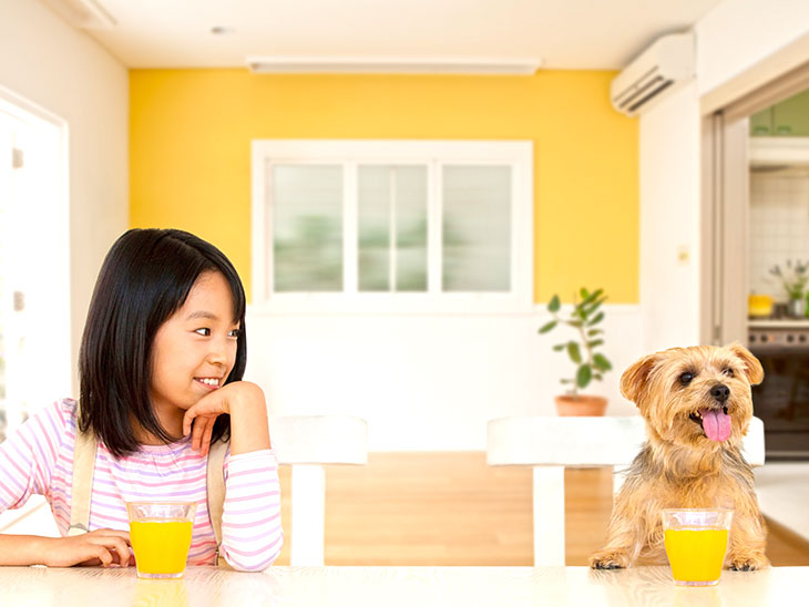 テーブルに座った女の子と犬