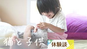 猫が子供に与える影響~本当に仲が悪かった?飼い主体験談