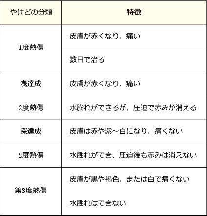 やけどの分類と特徴の表