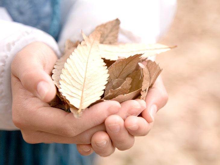 葉っぱを持った女の子の手