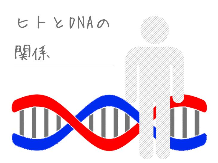 DNAとヒトのイラスト
