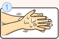 正しい手洗いの方法その1