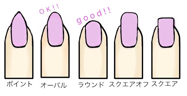 爪の形5種類のイラスト