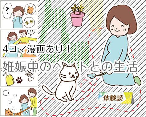 妊娠中にペットを飼う12の注意点~犬猫等と過ごした体験談