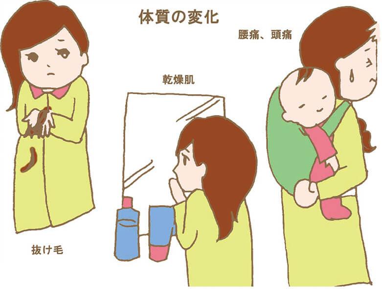産後の体質の変化のイラスト