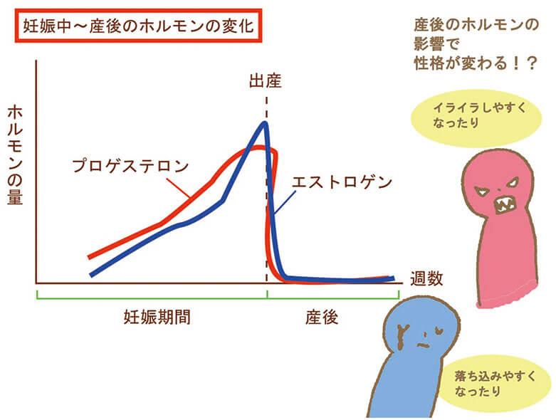 産前産後の女性ホルモンの変化の図解