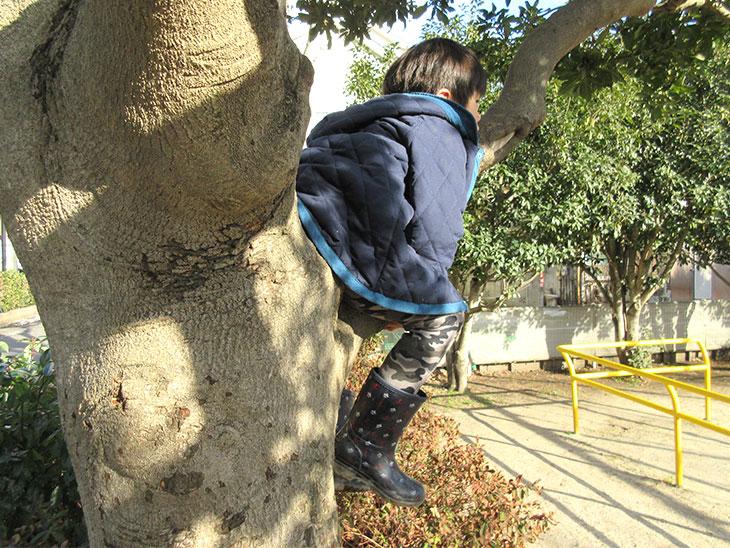 興味のある木登りをする子供