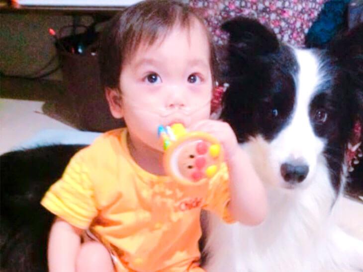 中型犬に寄り添われる赤ちゃん