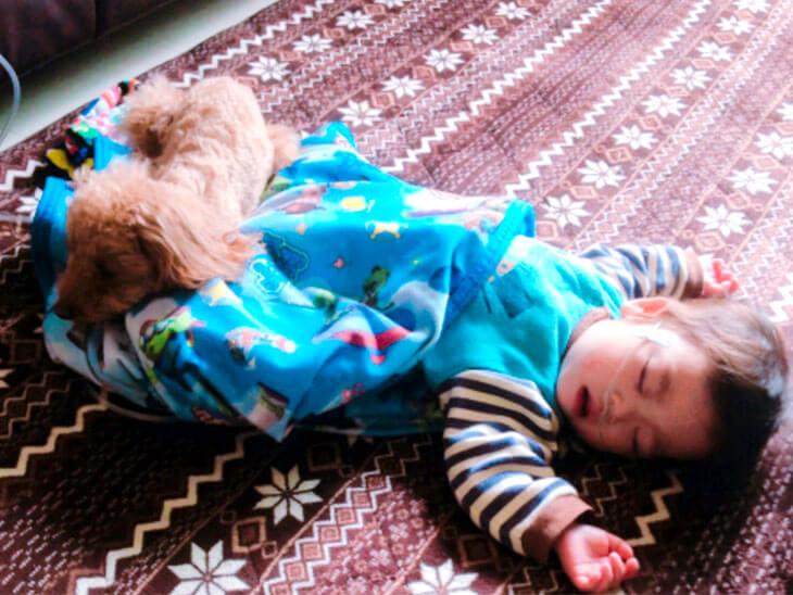 眠っている乳児の足元で寝ている小型犬の画像