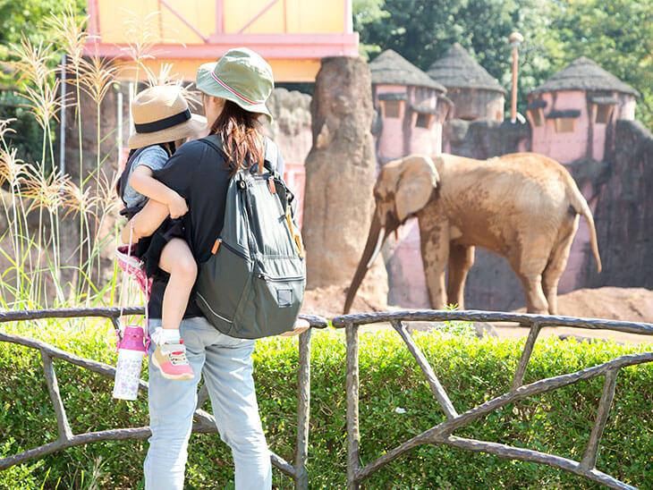 動物園の親子