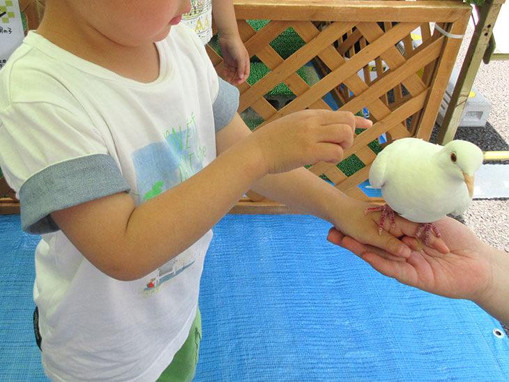 動物を撫でようとする子供