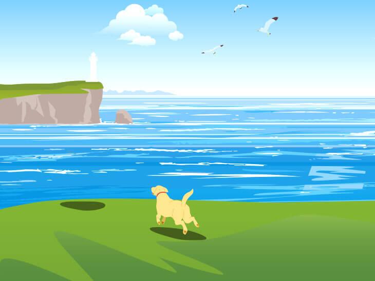 崖に向かって走っている犬のイラスト
