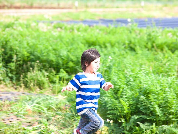 畑を走る男の子