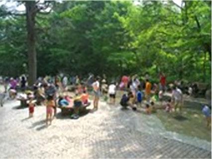 林試の森公園のじゃぶじゃぶ池
