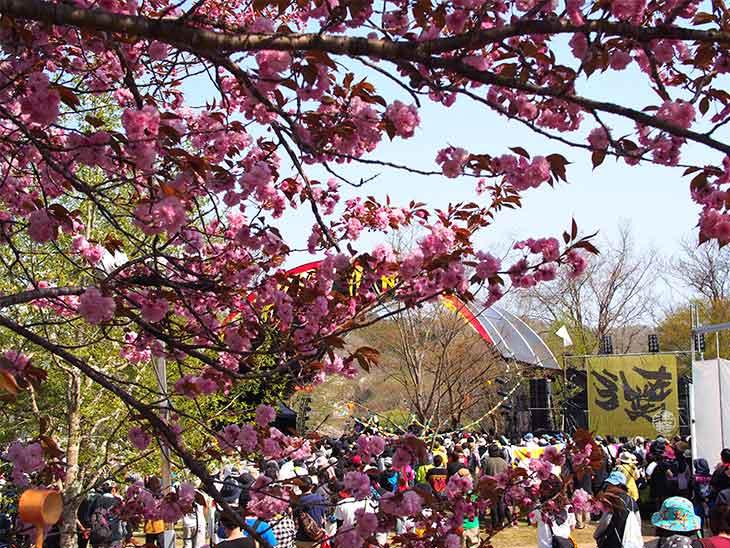 春フェスの人混みの様子