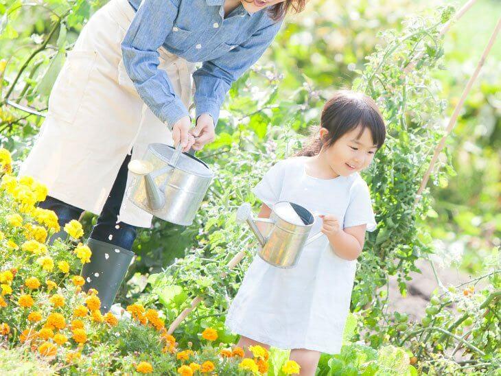 お花に水をあげる親子