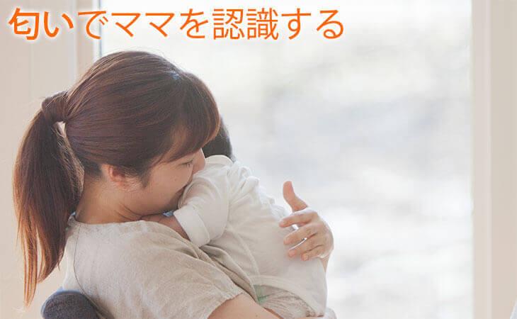 ママに抱っこしてもらう赤ちゃん