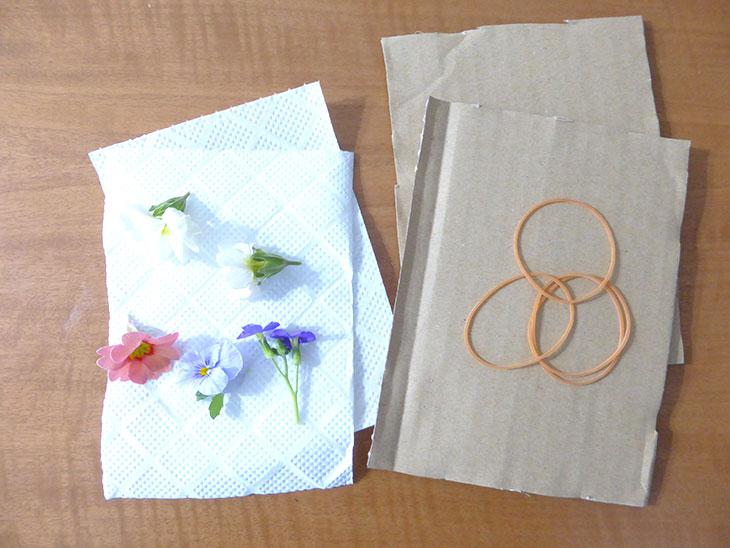 電子レンジを使った押し花の作り方に使う材料