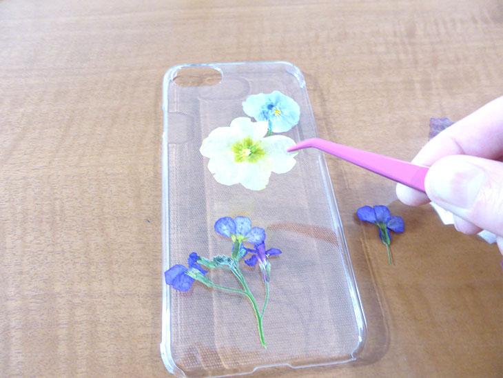 透明なiphoneケースの上に押し花を並べている様子