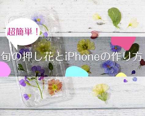 押し花の作り方まとめ!たった5分だからiPhoneケースも簡単