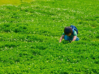 草原でしゃがんで遊ぶ子供
