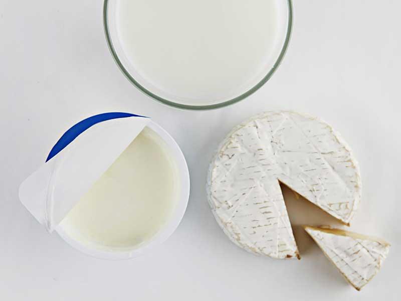 ヨーグルトとミルクとチーズ