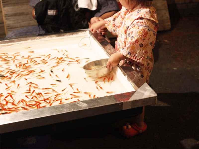 金魚すくいを初めて体験する小さい女の子