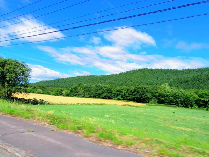 田舎道のドライブ