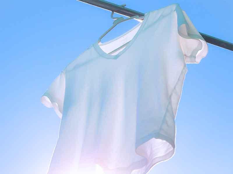 洗濯物干しに掛けたt シャツ